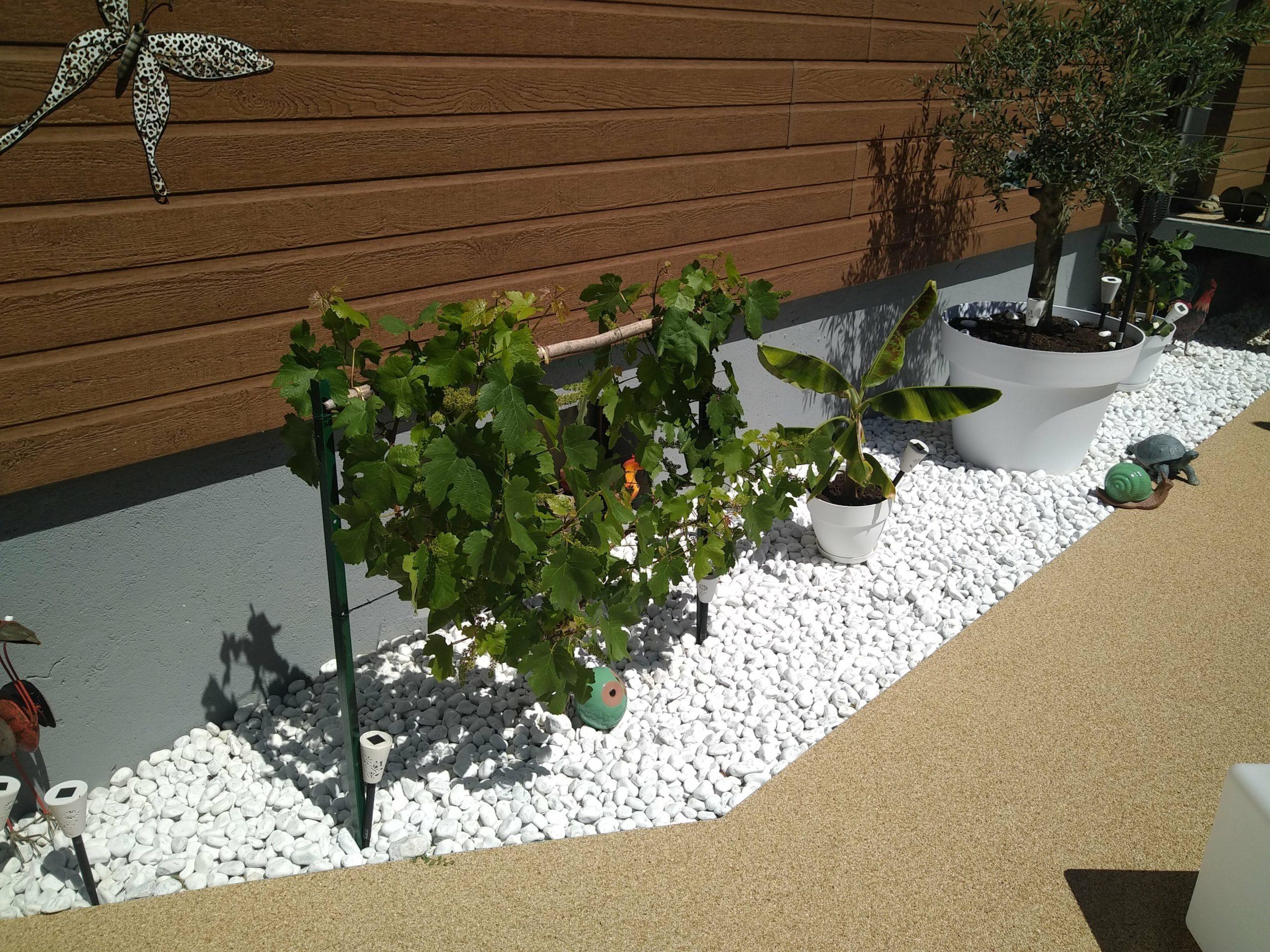 aménagement d'un espace de plantations en pierres blanches